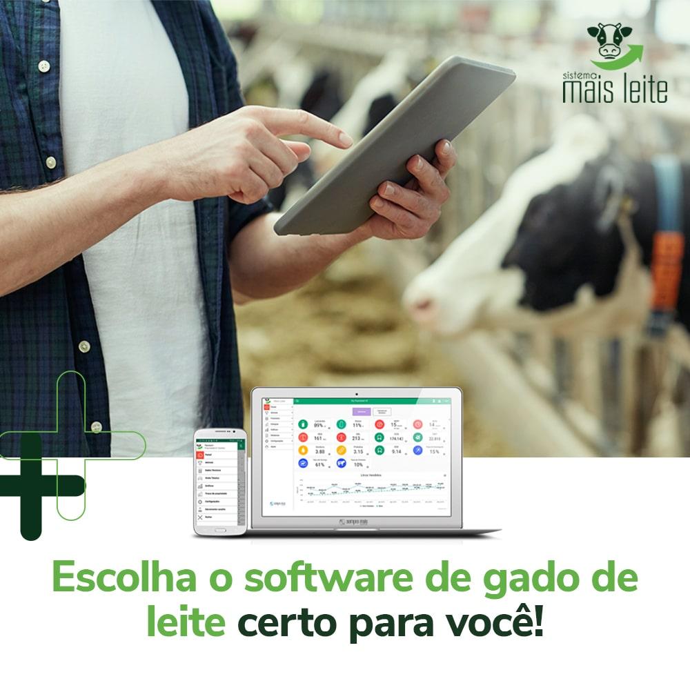 software de gado de leite