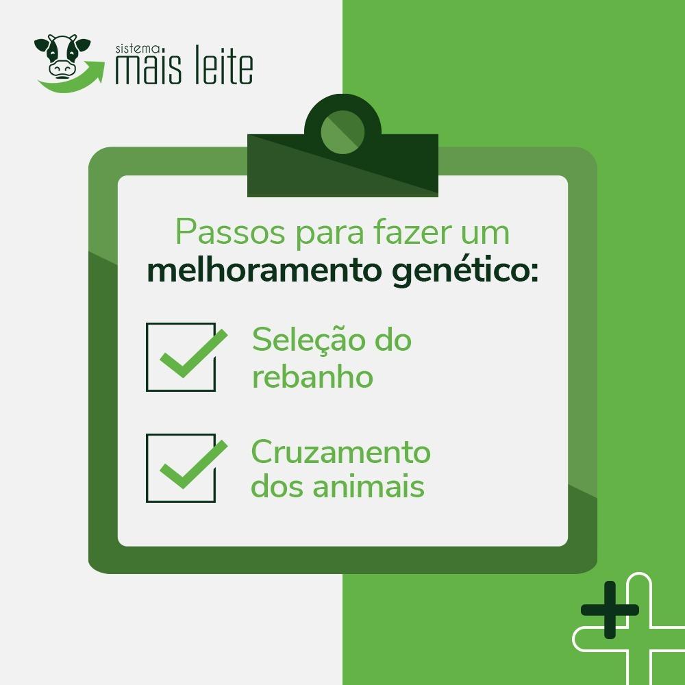 melhoramentogenético em bovinos de leite